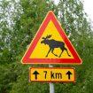 drogi w Finlandii